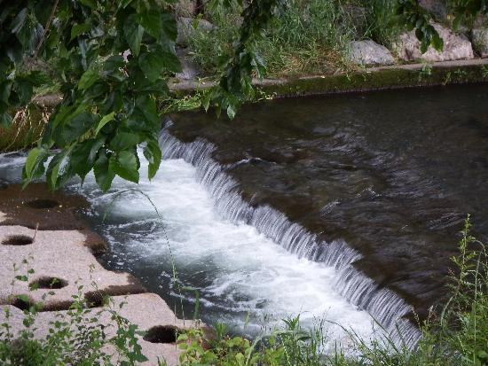 やはり、渓流を発見。