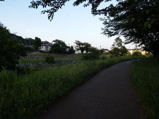 涼しく爽やかな風に包まれる散歩道(柳瀬川遊歩道)