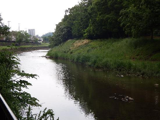 柳瀬川沿い遊歩道(金山緑地付近)