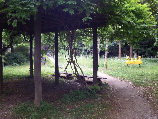 緑の多いごく普通の公園内