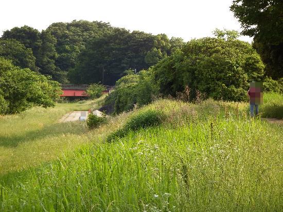 柳瀬川遊歩道を上流方面へ進むと赤い金山橋