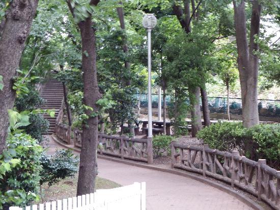 パークアベニュー秋津一番館の遊歩道