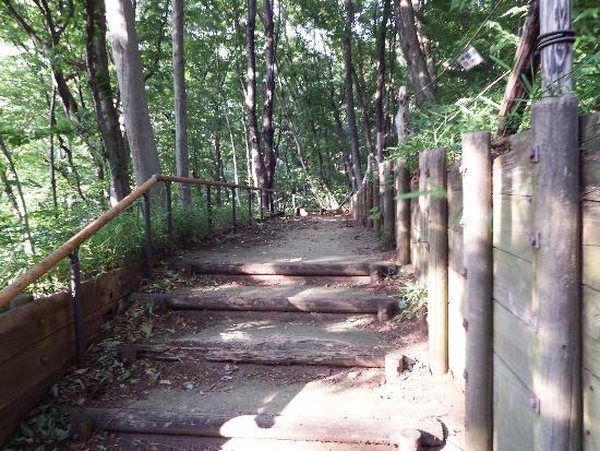 市有林入口の階段へ