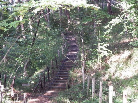 さらに奥のやや急な階段
