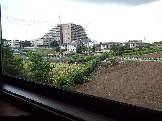 窓側はのどかな畑風景が広がる。