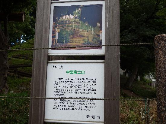中里富士山