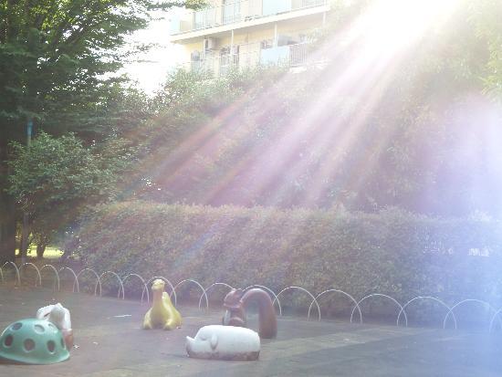 日光の神秘的な光に包まれる児童遊園の動物
