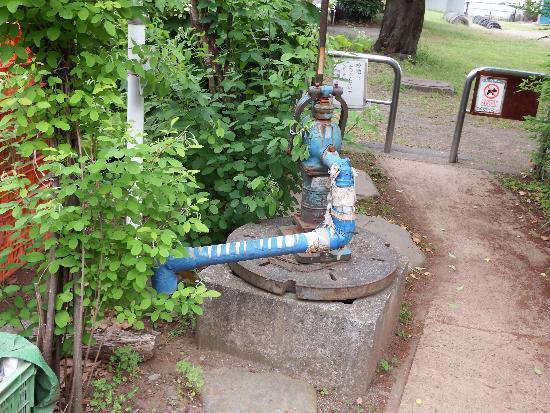 池のそばに井戸のようなポンプが設置