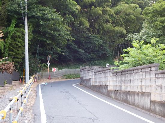 東福寺沿いの長い坂道も車のスピードが激しい場所