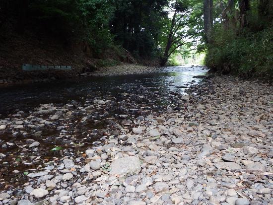 淵の森の柳瀬川