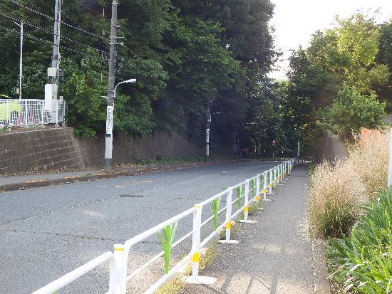 柳瀬川通り(金山橋方面)