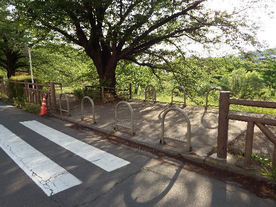 台田団地の敷地通路を抜けるとそこは柳瀬川遊歩道入口