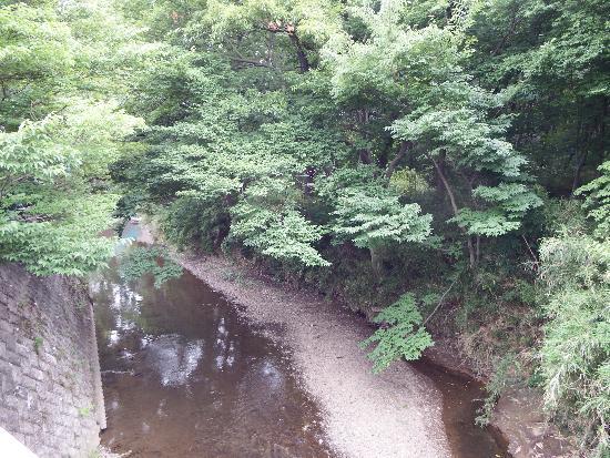 橋の下より柳瀬川を撮影