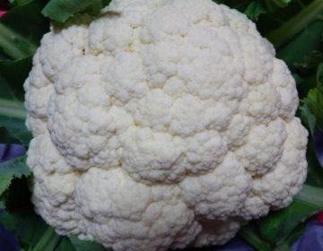 清瀬(東京都)の野菜直売所で買った旬の野菜を使った超簡単レシピ