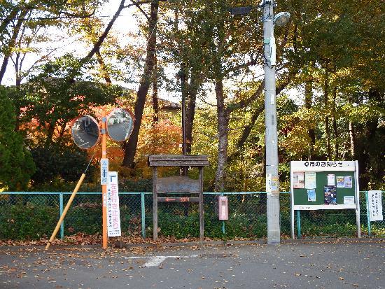 野塩八幡神社の近く