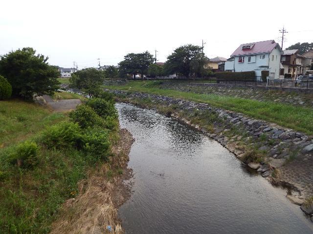 柳瀬川(上流側)