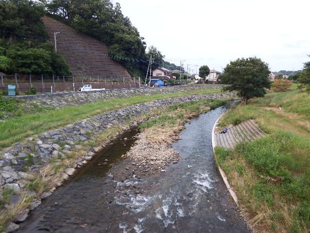 柳瀬川(下流側)